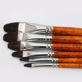 6PCS Professional Artist Watercolor Oil Paint Brush Set Flat Aluminum