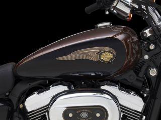 Anzahlung Harley Davidson Sportster 1200 Custom 110th Anniversary