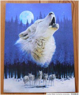 Indianer Alu Bild WOLF + MOND,Wölfe,Country,Western,Cowboy,Deko, 16 x