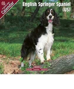 English Springer Spaniel (US) 2009 Wall Calendar