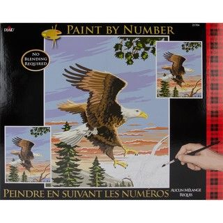 Paint By Number Kit   Eagle