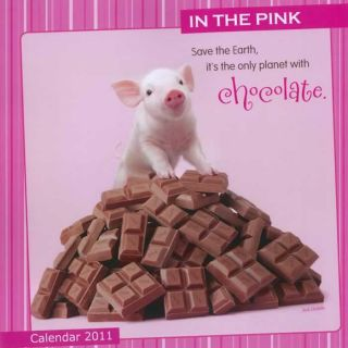 In the Pink 2011 Wall Calendar