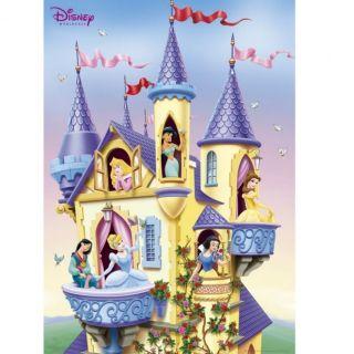 DISNEY PRINCESSE   Poster Castle   61 x 91 cm   Achat / Vente TABLEAU