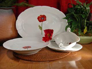 Limoges Poppy Completer Set