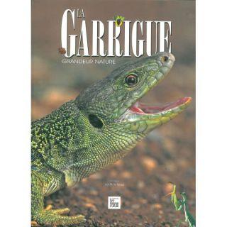 LA GARRIGUE ; GRANDEUR NATURE   Achat / Vente livre Jean Michel