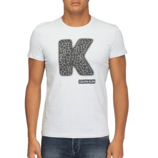 CALVIN KLEIN JEANS T Shirt Homme Gris   Achat / Vente T SHIRT CKJ T