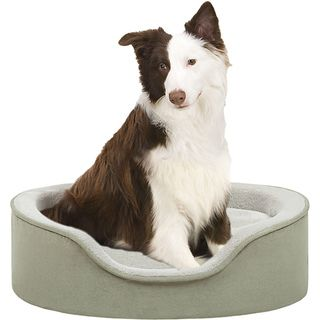 Soft Touch Sage Faux Suede Oval Cuddler Pet Bed