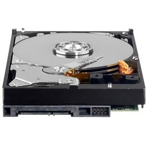 WESTERN DIGITAL   DISQUE DUR INTERNE   160 GO   SATA   Western Digital
