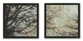 Framed Art Canvas Buy Contemporary Art Online