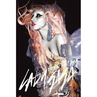 Affiche de Lady gaga Orange Hair (61 x 91.5cm)   Achat / Vente TABLEAU