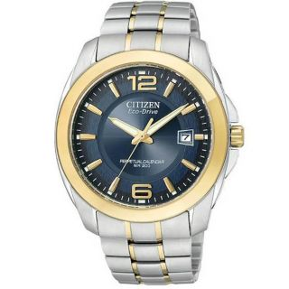 Citizen Mens Two tone Stainless Steel Eco Drive Watch