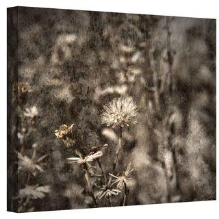 Mark Ross Dormant Wrapped Canvas Art
