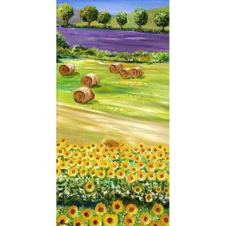 Isabelle Dupuy Fields of Colors Canvas Art