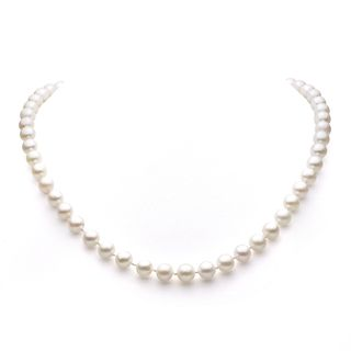 DaVonna 14k Gold White Akoya Pearl High Luster 16 inch Necklace (7.5 8