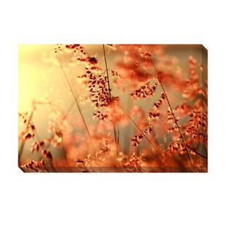 Orange Glow Oversized Gallery Wrapped Canvas