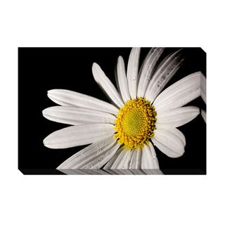Daisy Oversized Gallery Wrapped Canvas