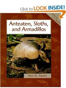 Anteaters, Sloths, and Armadillos (Animals in Order) Ann O. Squire