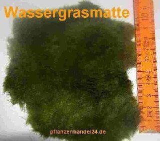 Matte Wassergras (ca. 80 cm²) Wassergrasmatte: Haustier