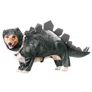 Animal Planet Stegosaurus Dog Halloween Costume