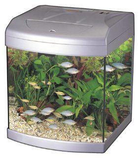 Aquarium Fish Tank ST320G   6.6 Gallons Silver Pet