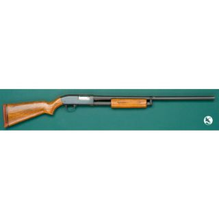Roebuck and Co. Model 20 Shotgun