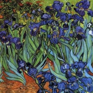 Purple Irises Flower Garden Iris Van Gogh Counted Cross Stitch Chart